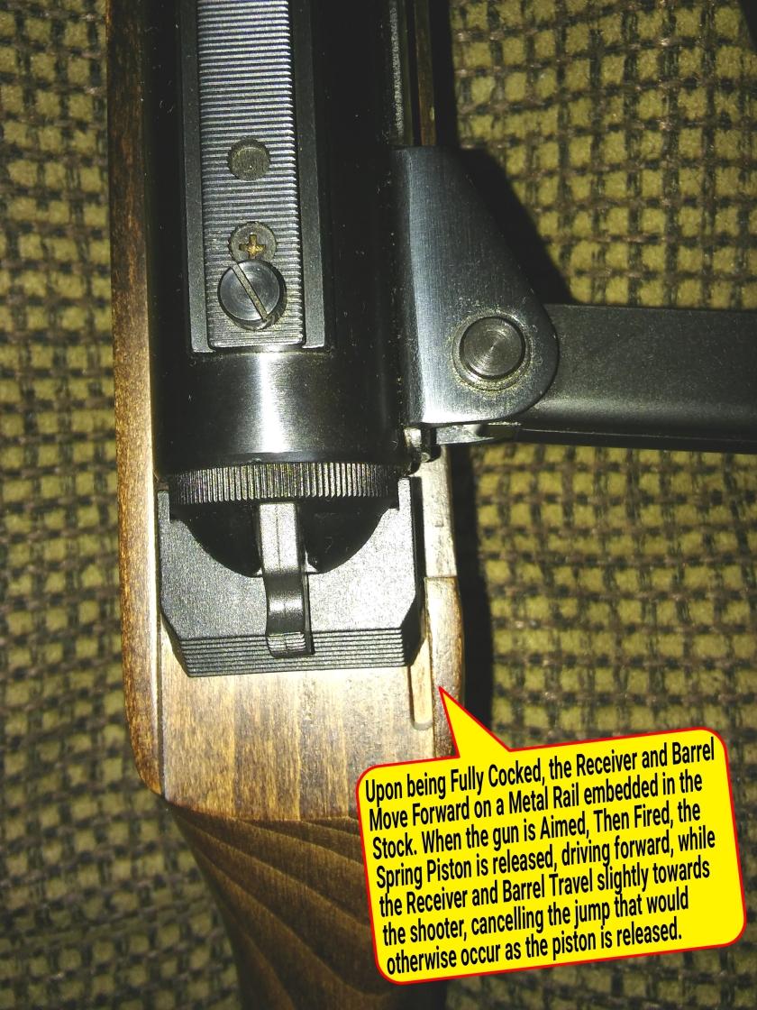 Air Rifles Group Close - up - 7